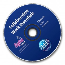 Digital Resource: Collaborative Work Essentials