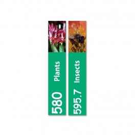 Slim Expanded Non Fiction Sticky Back Signs Set 2 Design 4 (Colour Coded)